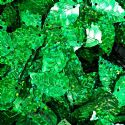 Sequins, green, 13mm x 24mm, 65 pieces, 5g, Leaf shape, Sequins are shiny, [CZP647]
